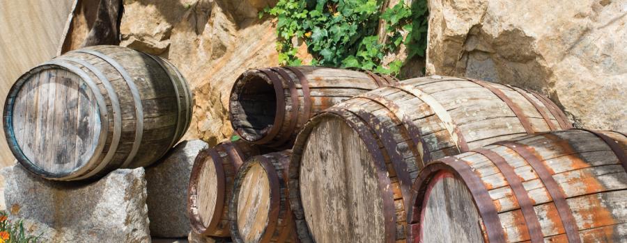 Museo del Vino Berchidda
