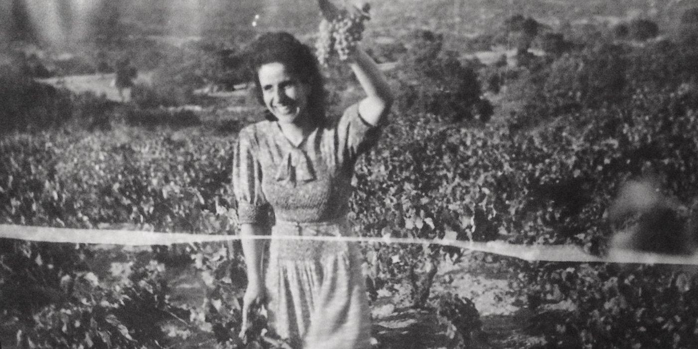 Cantina Giogantinu - 1960